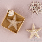 """Miniature Starfish Candle In Gift Packaging Favour """