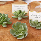 """Succulent Place Card Holder (Set of 4)"""