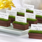"""""Evergreen"" Window Planter Place Card/Photo Holder (Set of 4)"""