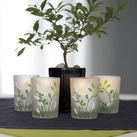 """Botanical Garden Votive Wedding Favour Candle Holders (Set of 4)"""