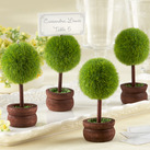 "Kate Aspen ""Topiary Photo Holder/Place Card Holder (Set of Four)"